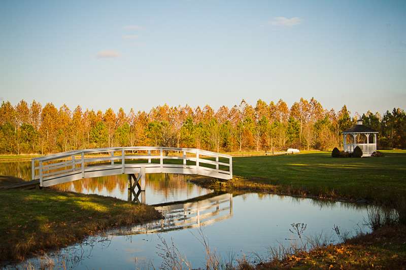 beaverdam-tree-line-bridge-and-gazebo2011-3